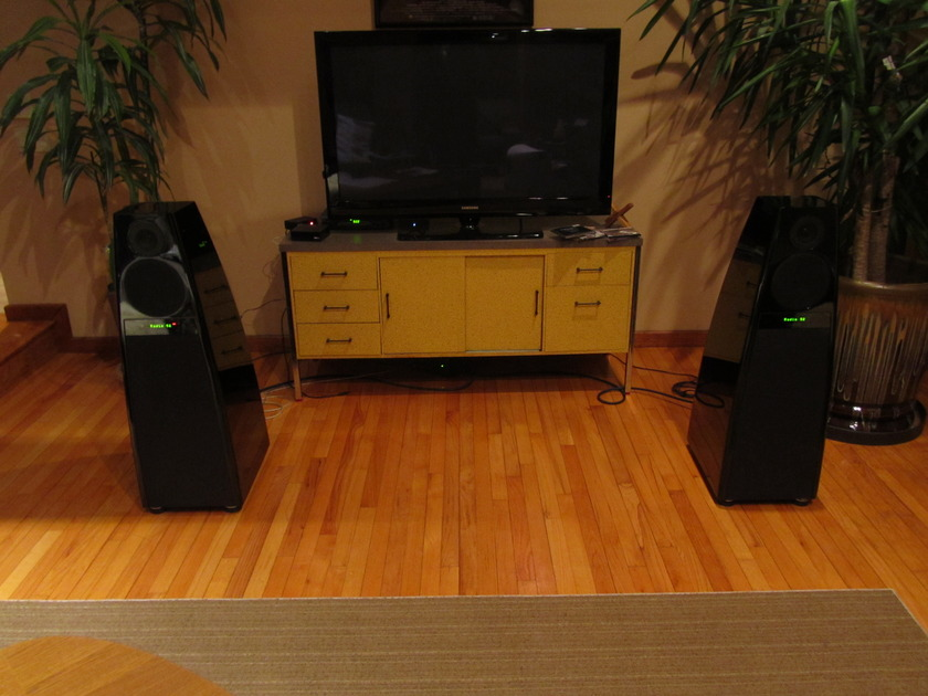 Meridian  DSP-7000 Digital Speakers