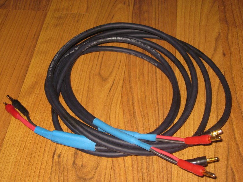 DH Labs T-14 - 6 foot biwired single speaker cable with banana plug termination DH Labs T-14