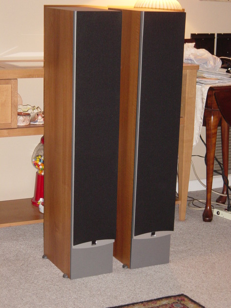 IKON 7 Tower Speakers Like new, less that 10 hours use!