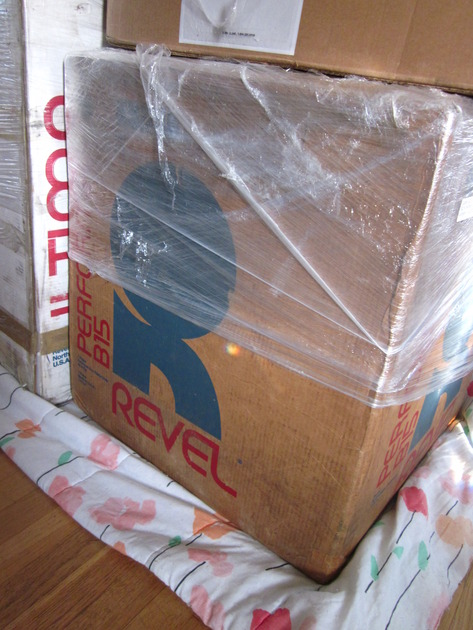 Revel Performa B15 Subwoofer
