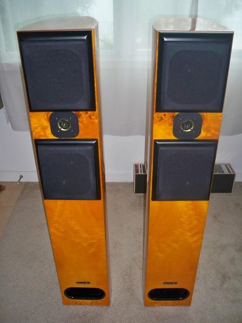 Acoustic Zen Adagio Golden Burl.