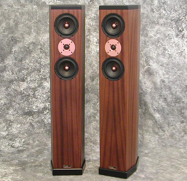 Tyler Acoustics D3's in ribbon mahogany! 2yr warranty