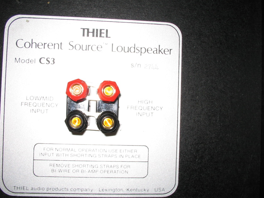 Theil  CS3  2 Theil Coherent Source Speakers