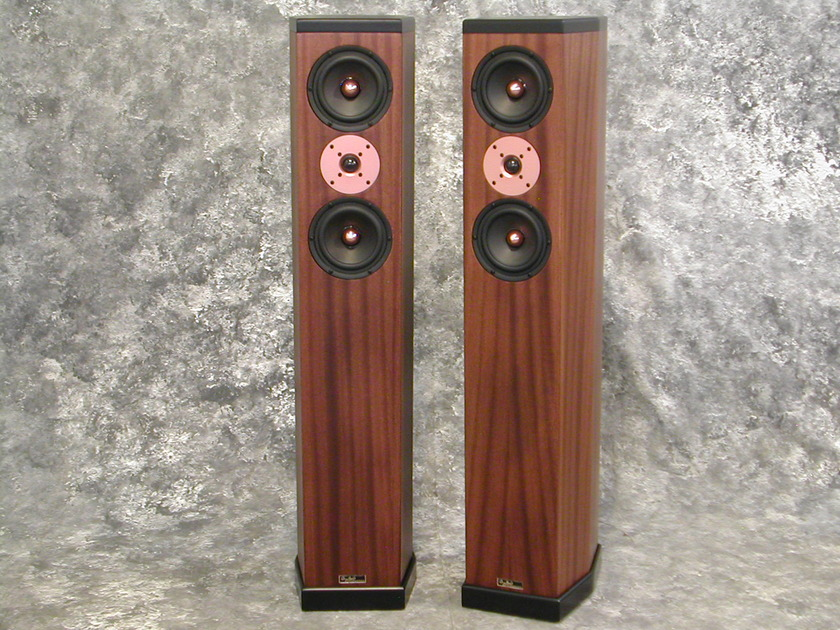 Tyler Acoustics D3's in ribbon mahogany! weekend special!