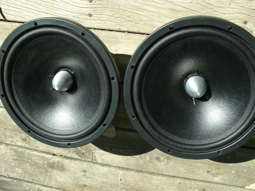 Acoustic Elegance Dipole 12 One of the best Open Baffle Mid Bass drivers