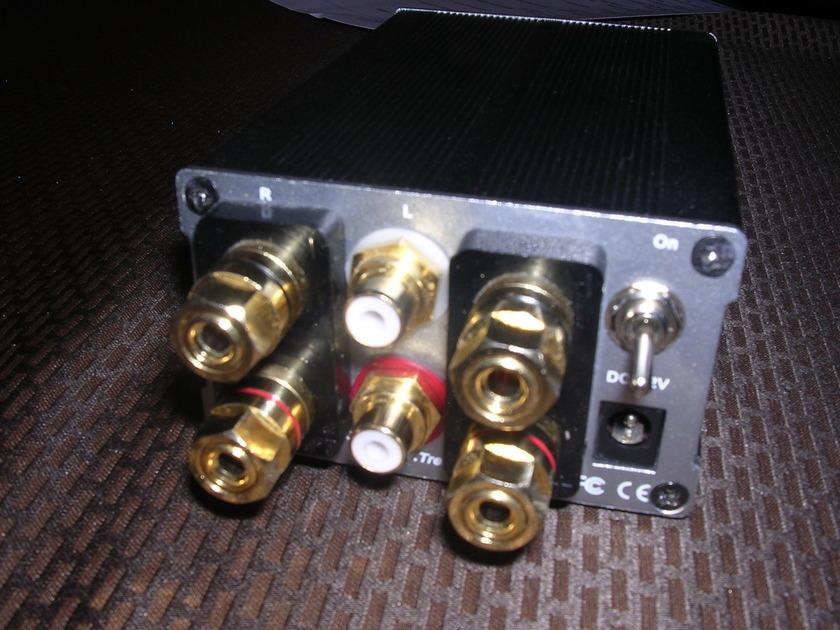Trends TA-10.1 M. Mardis V2 mods Tripath Amplifier
