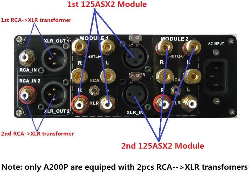 ICEpower 125ASX2 DIY-Kit & Assembled Mono block 550w amplifier Free Shipping