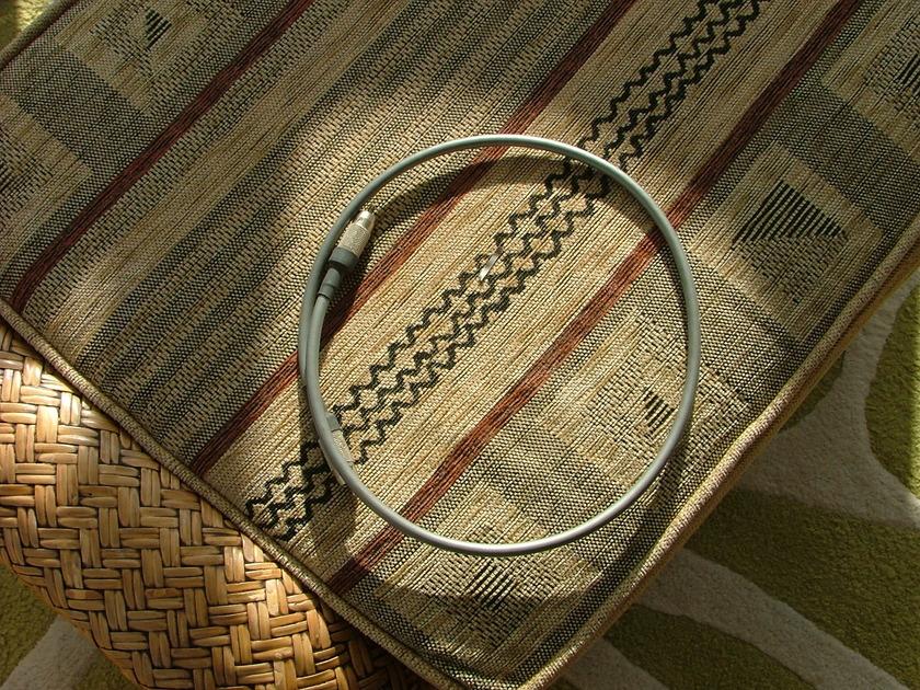 Audio Note AN-Vz Digital I/C