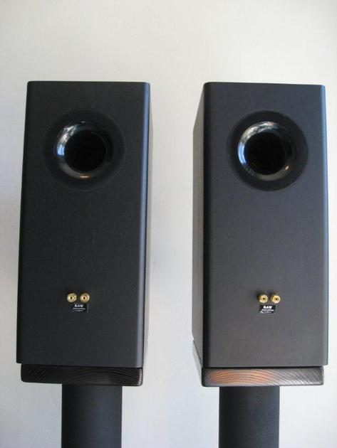 GR Research Diluceo Monitors w/ ribbon tweeters