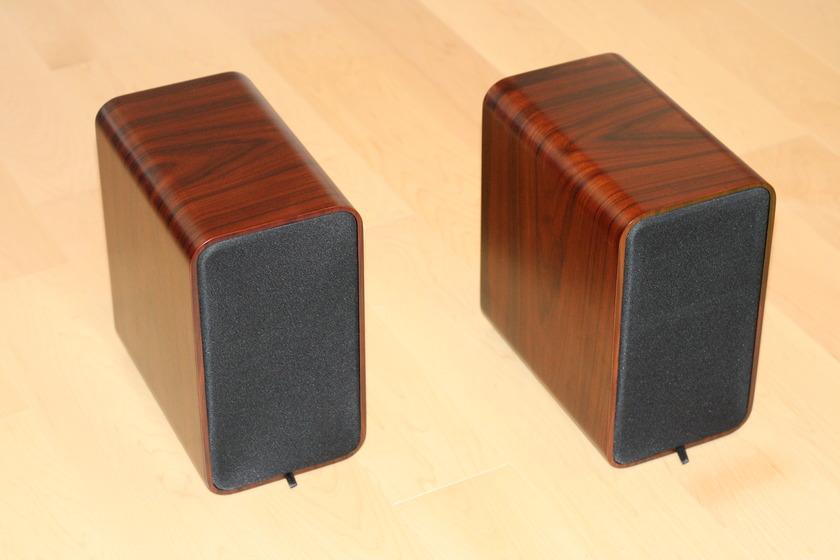 Peachtree DS5.5 Speakers