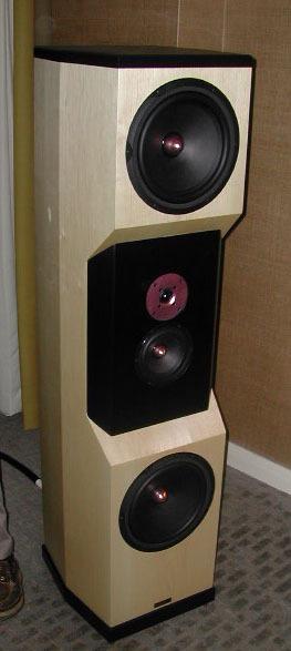 Tyler Acoustics D20's in maple! warranty!