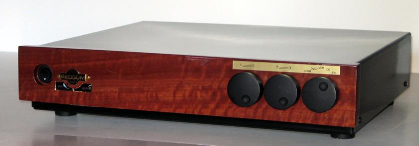 REDGUM Audio RGi120 ENR   110-120V Model