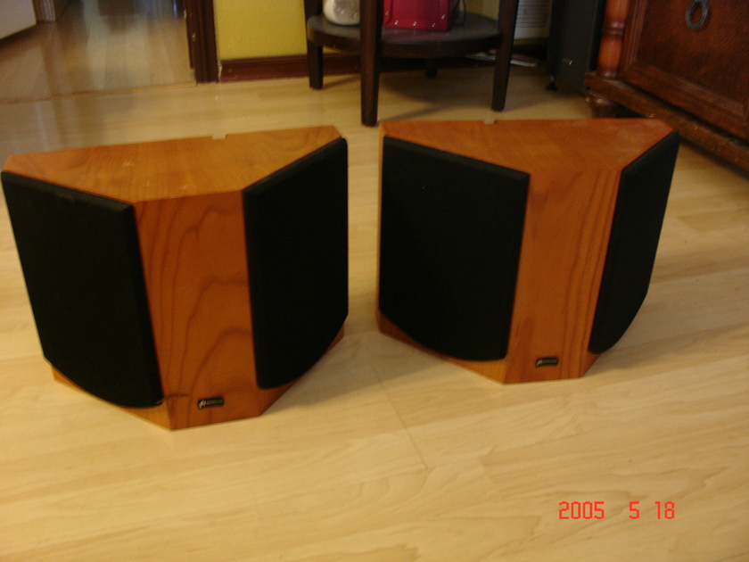 APERION AUDIO  INTIMUS 522D-SS DIPOLE SPEAKERS