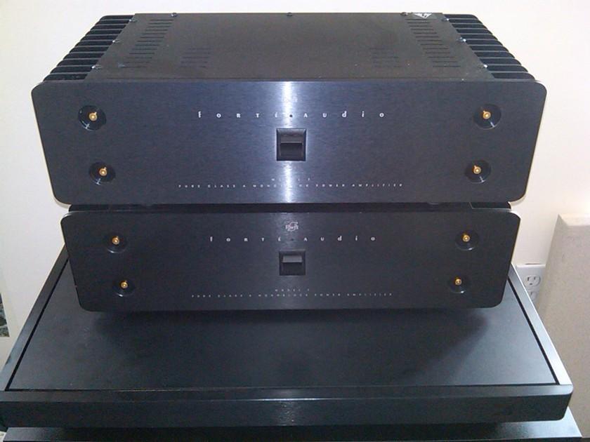 Forte  Model 7 Monoblocks Pure Class A