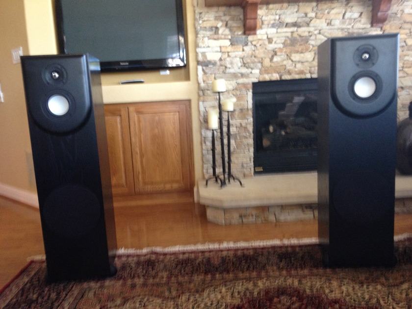 Revel Performa F30 Floorstanding Speakers