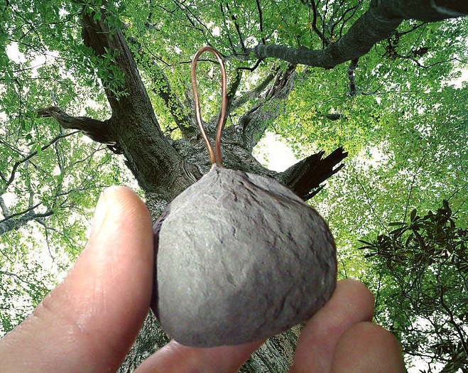 Coconut-Audio TreeHanger (natural noise reduction)