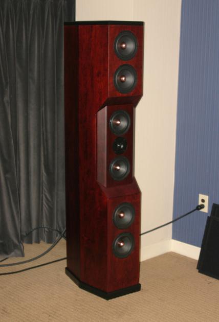 Tyler Acoustics D1's in custom cherry! 2yr warranty