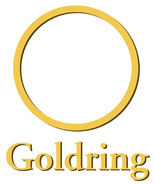 Goldring Eroica 'H' Brand New In Box High output MC