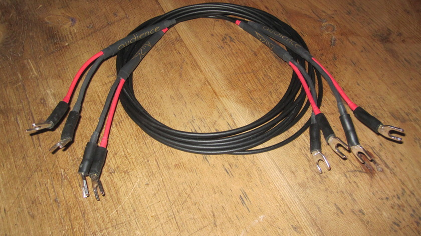 Audience Au24 Speaker Cables 2.5m with spades