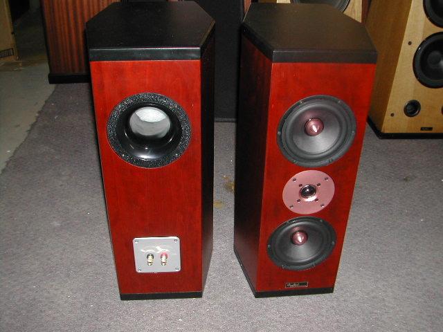 Tyler Acoustics D3M's in custom cherry! special!