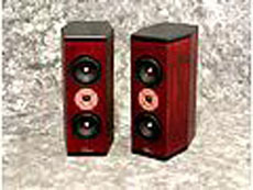 Tyler Acoustics D3M's in custom cherry! special $1500 shipped!