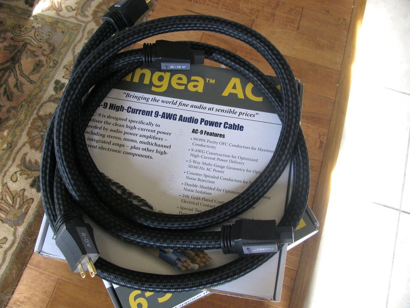 Pangea AC-9 Two Power Cables  1.5M