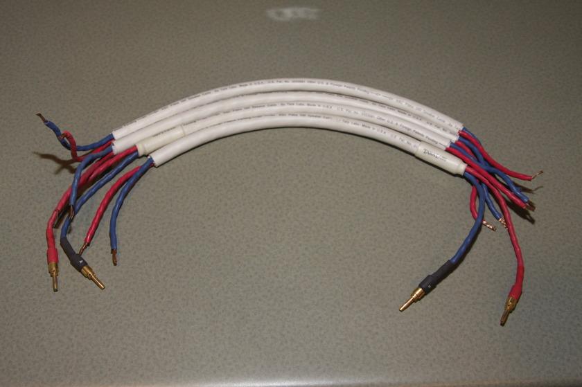 Tara Labs RSC Prime 500