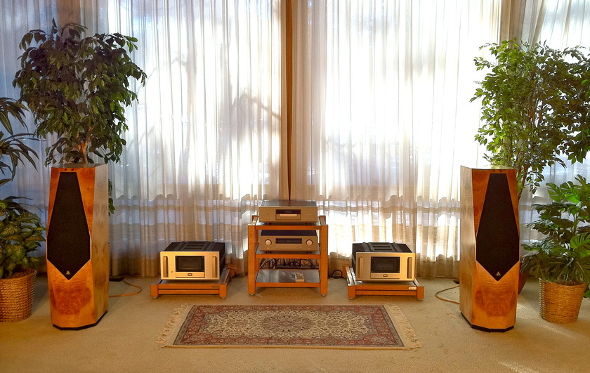 Accuphase/Avalon M-2000/Eidolon Accuphase/Avalon Audio System