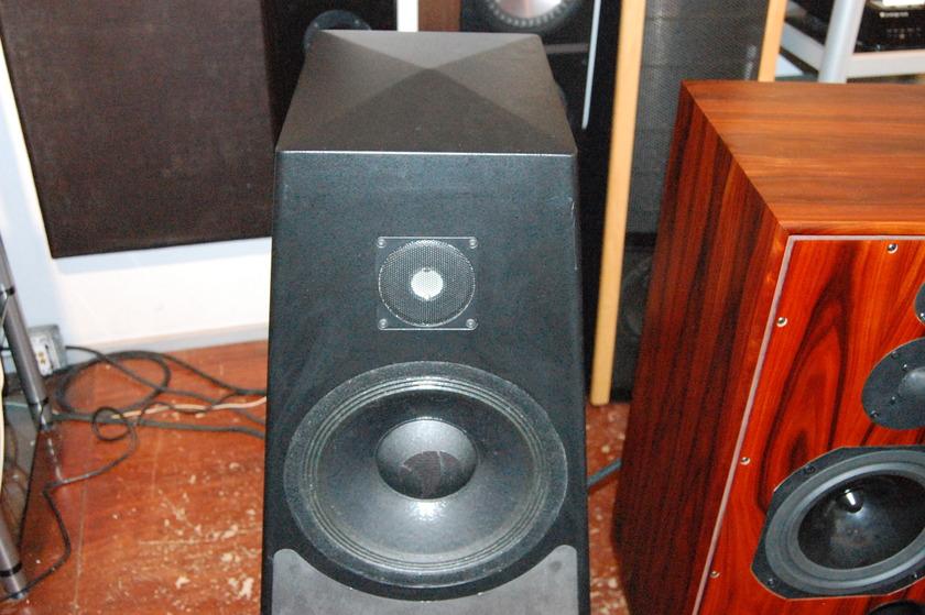 Talon Loudspeakers Raven C Floorstanding Speakers  w/ Talon Spikes