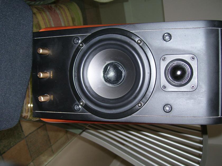 SWAN M-200 Computer Desktop
