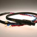 Rel Speakon cable
