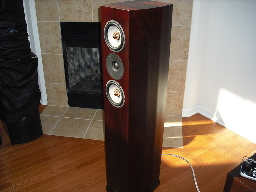 Tyler Acoustics Taylo 7U's in black cherry 1yr old! $2400 shipped